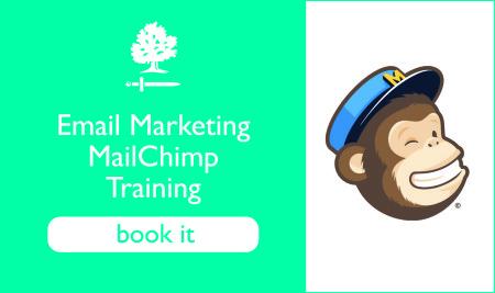 MailChimp Training Class